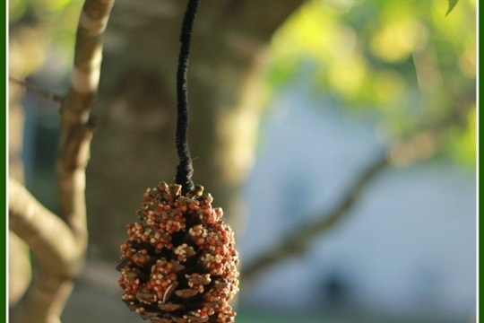 Craft Project Idea Pinecone Bird Feeder
