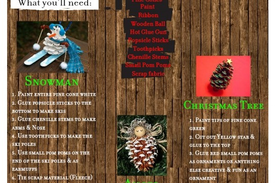 How to create easy Pine Cone Decorations