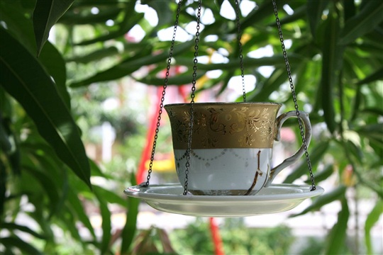 How to Transform a Chipped Teacup Into a Bird Feeder