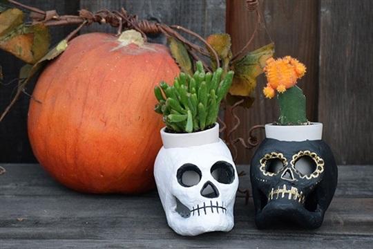 DIY Basics 5 Step Dia de los Muertos Planters